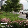 Friends of Hudson River Park